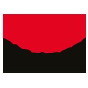 STEDMAN_logo